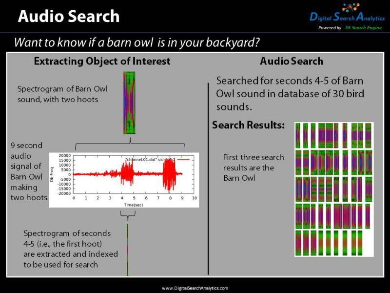 Audio Search allows the user to take an audio clip and search for it. In this example the two hoots of a barn owl are searched for and found in a database of bird sounds.